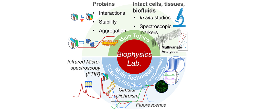 graphical_abstract_Natalello BtBs UNIMIB